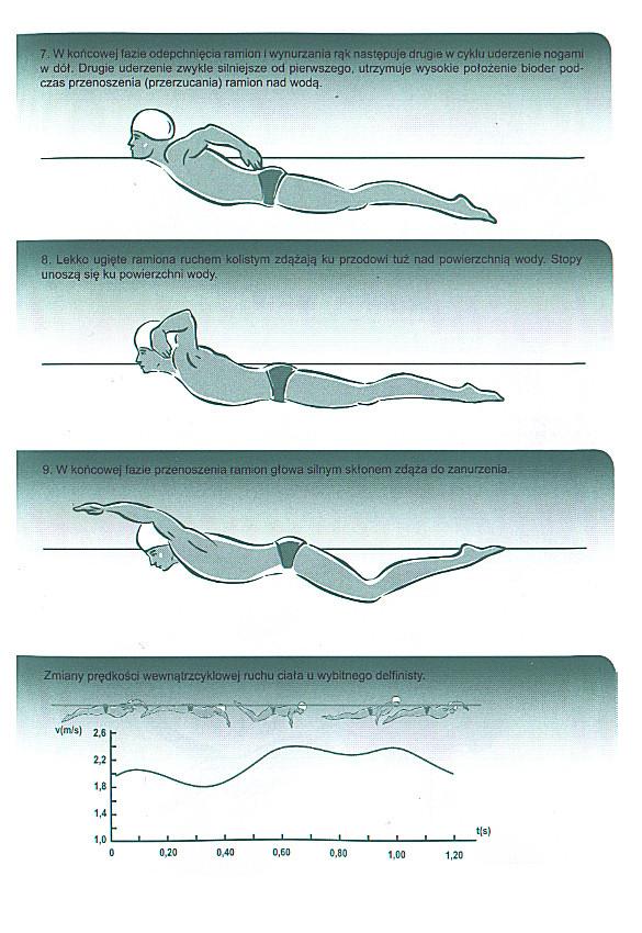 Nauka pływania stylem motylkowym. Technika pływania delfinem.