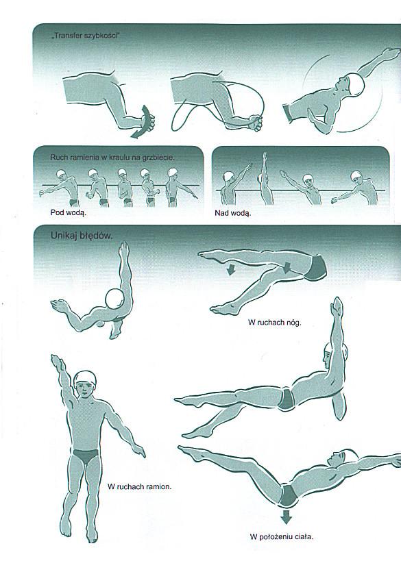 Lekcje pływania stylem grzbietowym. Technika pływania na plecach.