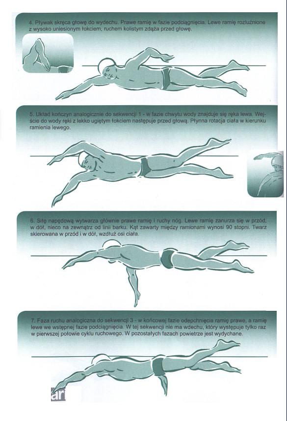 Kursy pływania stylem dowolnym. Technika pływania crowlem / kraulem.