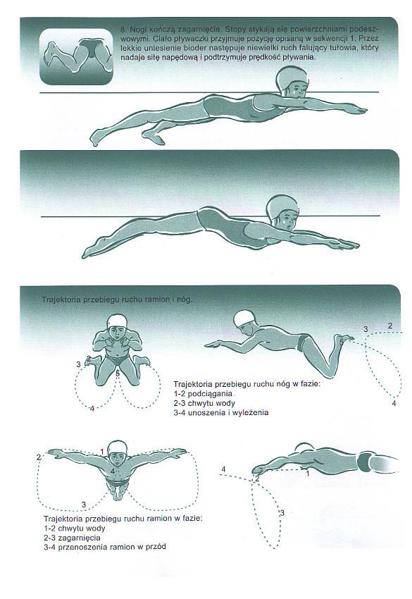 Nauka pływania stylem klasycznym. Technika pływania żabką.